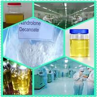 Deca-Durabolin Nandrolone Decanoate (DECA) CAS:360-70-3 250mg/ml