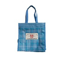 promotion  gift bag /shopping bag/foldable shopping bag