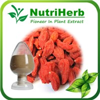 Natural Goji Berry Extract