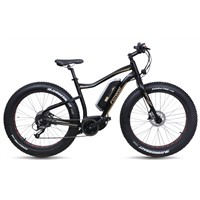 Electric bike fat tyre model mid-drive motor (TDB10Z-3)