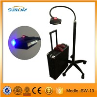Professional 36W laser teeth whitening light