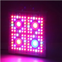 Factory direct sale led grow plant light 300w 3gp king cob led grow light for medical growing plants