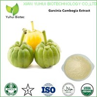Garcinia cambogia extract,pure garcinia cambogia hca,garcinia cambogia powder
