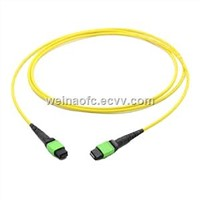 Fiber Optical Patch Cord MPO-MPO MTP Singlemode 12 24 Cores Fibers