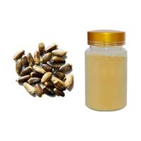 Milk Thistle Extract, Extract Cardui Mariae, Silymarin
