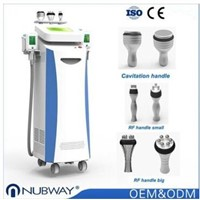 China supplier cryolipolysis slimming machine weight loss machine with CE approved