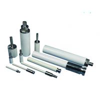 SICER ceramic plunger pump