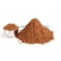 Natural and Alkalized Cocoa Powder and Beans