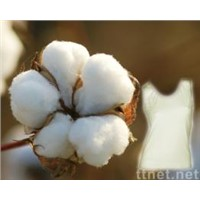 raw cotton and bleached cotton for sell