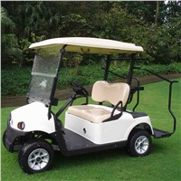 RD-2AC+D electric golf cart with AC system standard configuration