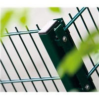 galvanized and coated 868mm 656mm Double Wire Mesh Fence