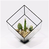 10 * 10 CM Metal Frame Square Glass Terrarium Home Decoration Glass Vase Business Glass Gift