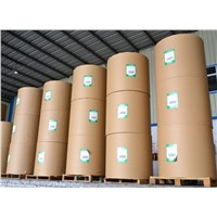 Offset paper/Printing paper/Wood free paper in best price