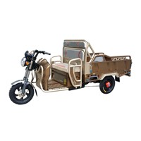 48V Deluxe Electric Cargo Tricycle with Adjustable Back Rest