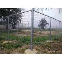 50x50mm pvc coated metal mesh chain link fence for sale