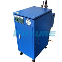 50 kg/h top-rated electric steam generator for processing