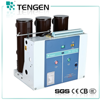 ZN63-12 Indoor High Voltage Vacuum Circuit Breaker