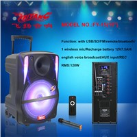 Feiyang Temeisheng 100 Watt 15 Inch Home Theater Speaker System with Best Price FY-15 with USB Powered Dj Speakers