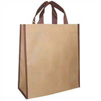New Arrival Popular Nonwoven Bag