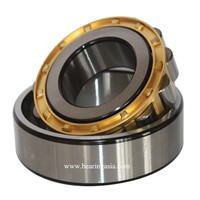 Single Row Brass Cage Eccentric Bearing RN206M
