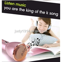 Karaoke Microphone Player Bluetooth Speaker for PC Phone