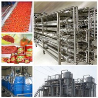 600T/D Tomato Processing Line Machine