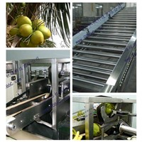 coconut processing line