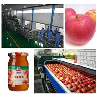 Apple jam production line