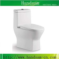 one piece toilet bowl water closet