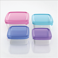 Food Storage Container L021