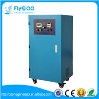 100g Ozone Generator for Air Purifiers