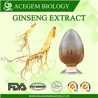EC396 Standard Panax Ginseng Root Extract 1%-20% HPLC for Dietary Supplement