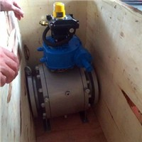 Forged Ball Valve with Pneumatic Actuated