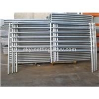 Permanent Horse/Cattle Fence Panel Design 7 Rails Galvanized Pipe