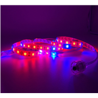 Plant Lights Indoor Red & Blue Fluorescent/Incandescent Lights IP54