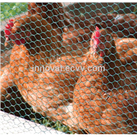 Chicken Wire Netting Hexagonal Wire 10mm Netting Poultry Mesh