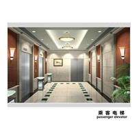 Promotional Best-Selling 630kg(8 Persons) Lift Passenger Elevator