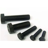 High Strength Hex Bolts with ISO 9001: 2008