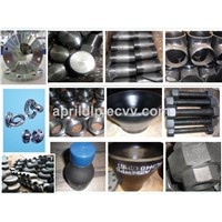China Stainless Steel Screwed Pipe Fitting, Elbow, Tee, Cross, Union, Coupling, Nipple, Nut, Cap, Plug, Reducer