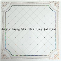 Decorative Building Material PVC Plastic Ceiling Board