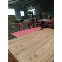 PACKING PLYWOOD, Furniture Plywood & Construction Plywood