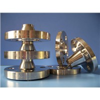Carbon /Stainless/Alloy Steel Flange, Forged Flange