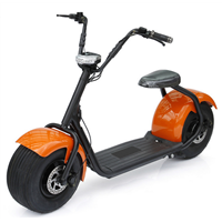 Two Wheel Smart Electric Scooter Motorcycle