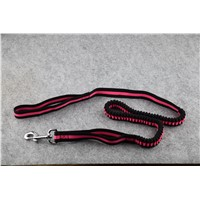 High Quality Fashionable Nylon Leash for Dog Walking & Training