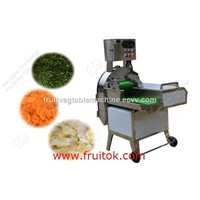 Multifunction Vgeteble Cutting Machine with Best Price