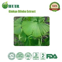 High Quality Ginkgo Biloba Leaf Extract 24% Flavonoides 6% Lactone