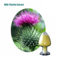 Food Grade High Quality 80% Milk Thistle Extract Silymarin