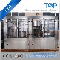 2017 New Hot Sale Automatic Drinking Water Filling Equipment