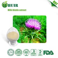 Top Quality Silymarin Milk Thistle Extract 80% Silymarin