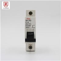Dz47 Series Mini Circuit Breaker with High Breaking Capacity